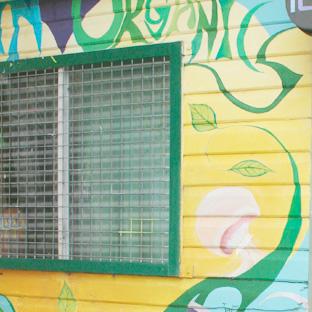 Australia : Trip to Nimbin, a hippie heaven