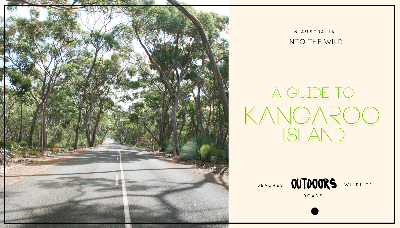 Into the wild: A Guide to Kangaroo Island