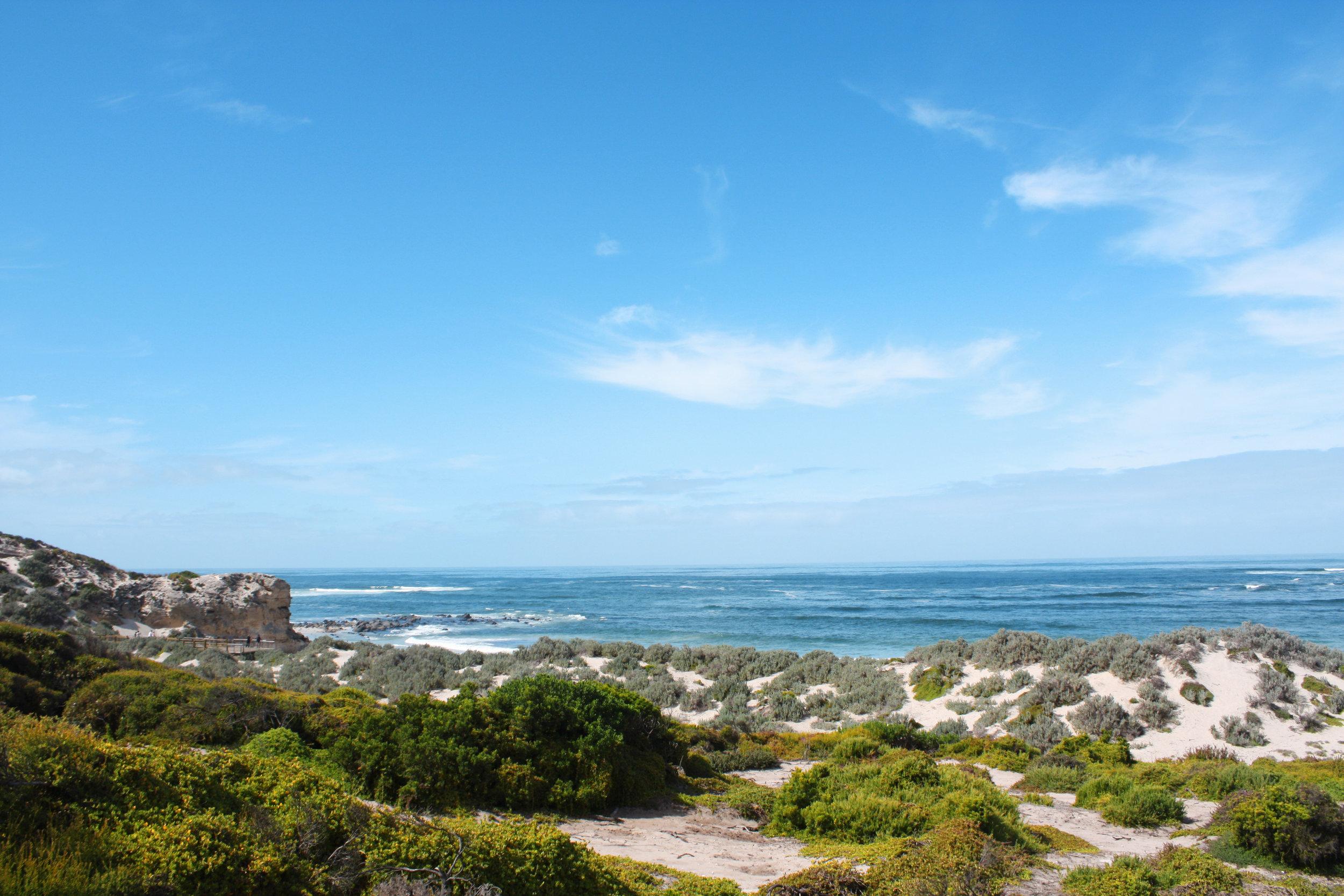 Discover australia - Gold Coast, sydney, The great ocean road, kangaroo island