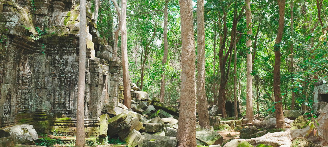 Discover cambodia - Siem Reap & the angkor temples