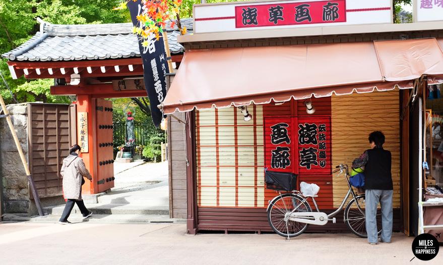 Discover Japan - Tokyo, kyoto, hokkaido & okinawa