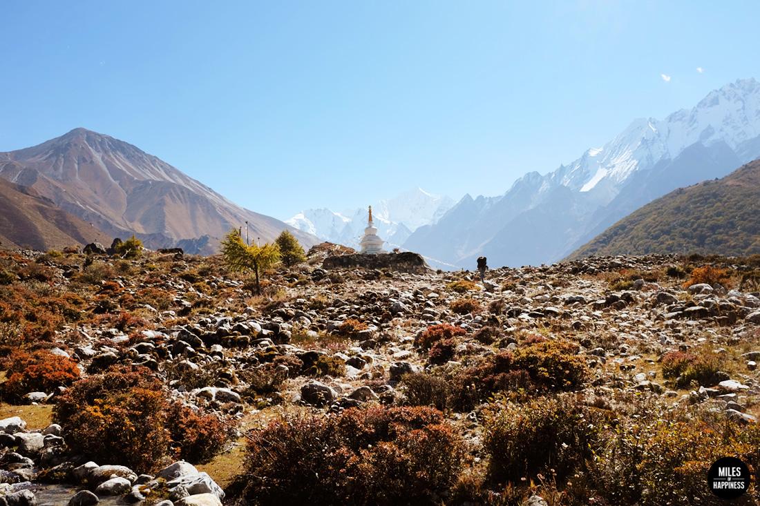 discover nepal - kathmandu & langtang valley