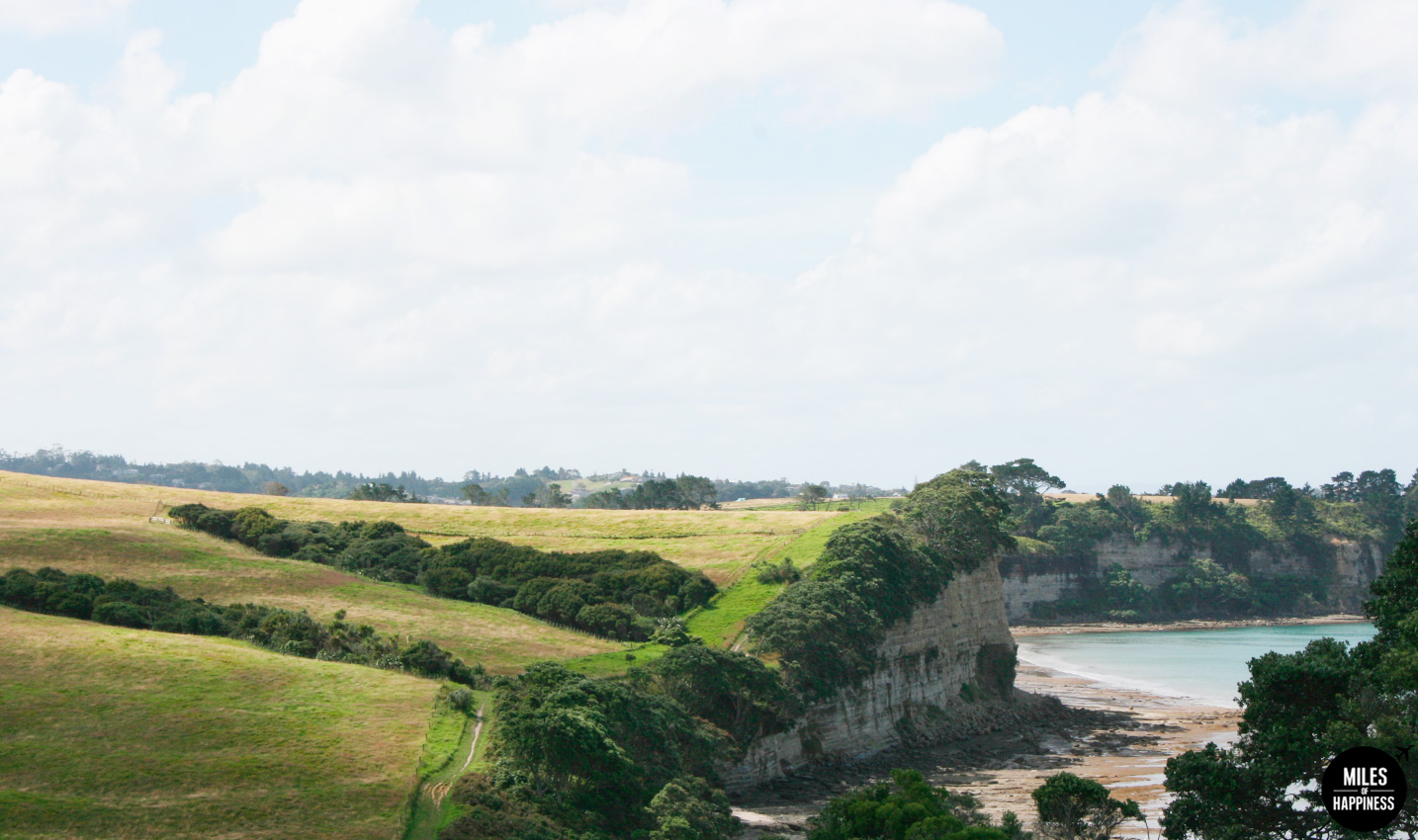 10 Things to do in Auckland region : Long Bay