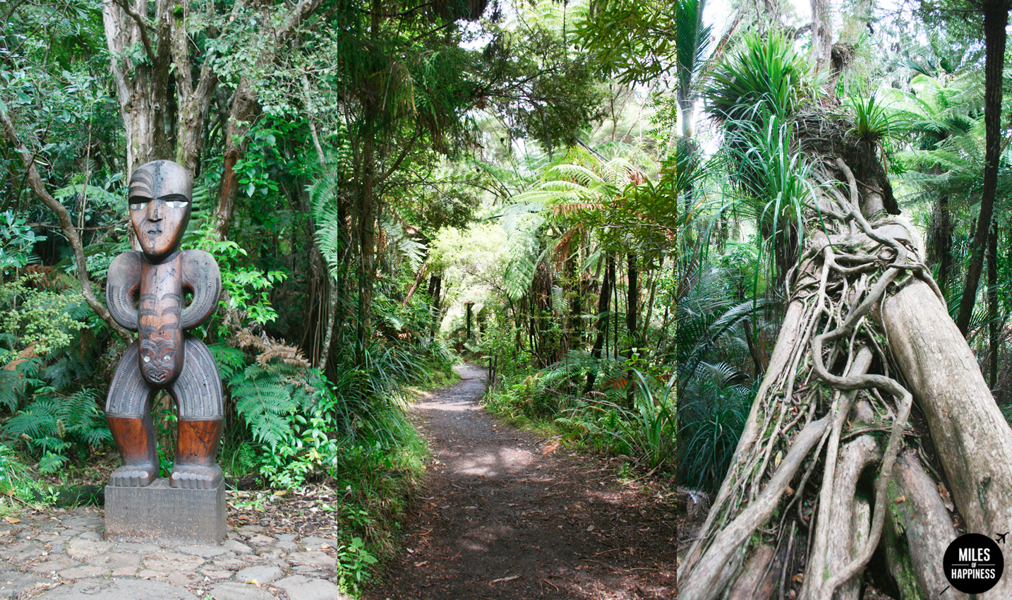 10 Things to do in Auckland region : Waitakere Ranges Regional Park
