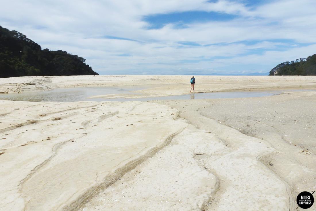 A road trip in Nelson Tasman Region, New Zealand