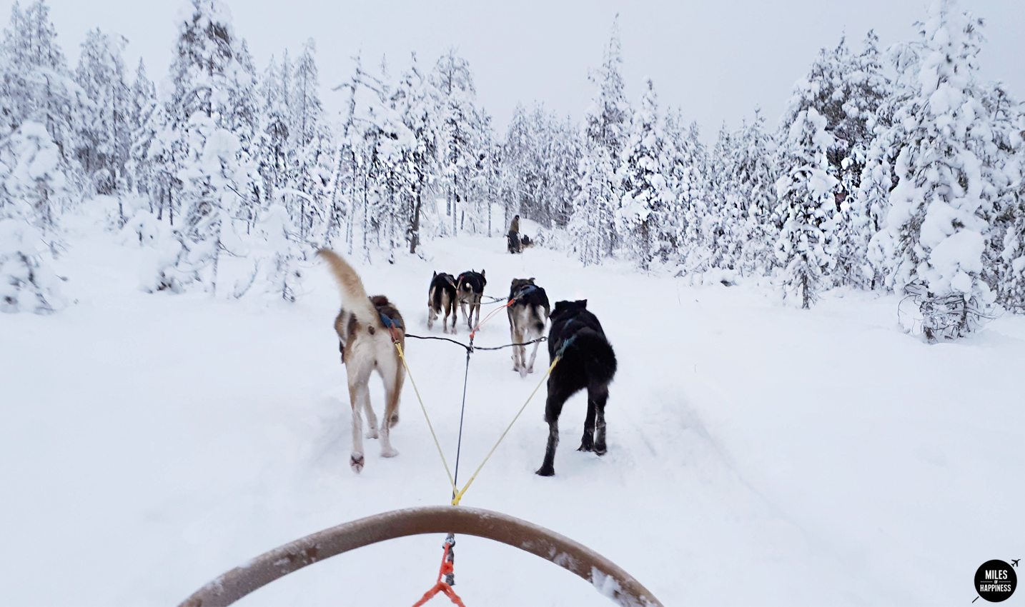 Lapland: A journey into Finland's frozen beauty