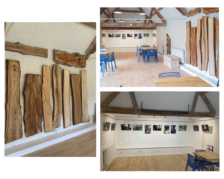 Tom Warland: The British Heritage Project & Tom Ball Carving, Coleshill and Buscot Estate, Oxfordshire (Installation Photographs) 2019
