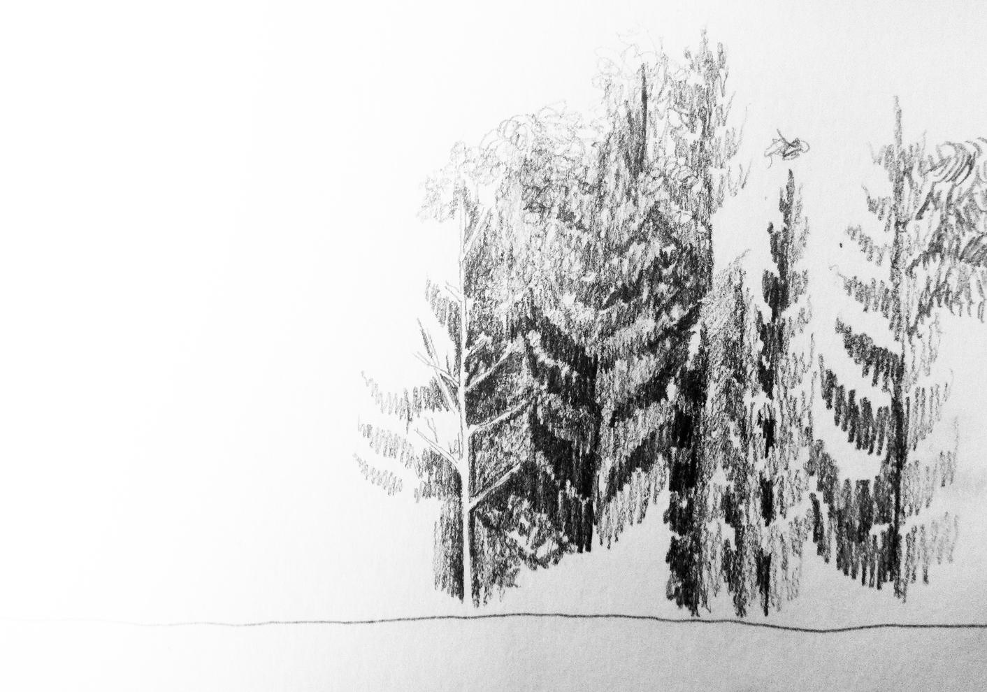 ES-RHS-sketch005.jpg