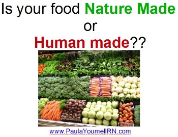 nature made vs man made food.JPG