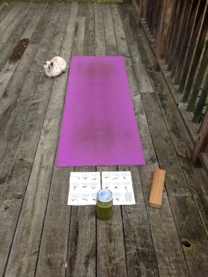 If 45 degrees F... yoga on the deck is my preferred place to practice. Yes, cats are a reoccurring theme in this mindfulness; sensing & appreciating the peaceful energy.