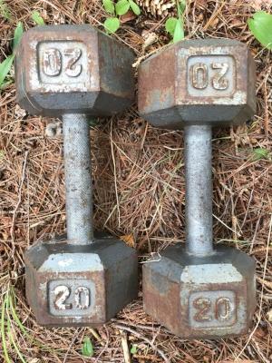 20 lb weights.JPG