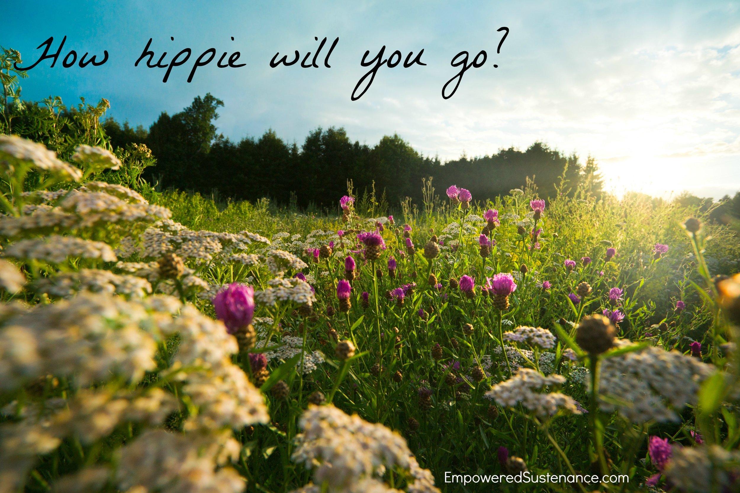 how-hippie-will-you-go.jpg