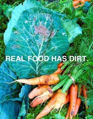 Dirt food is dirty small.jpg