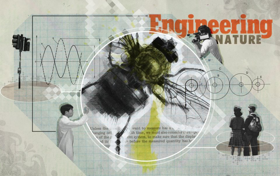 Engineering Nature (March, 2012)