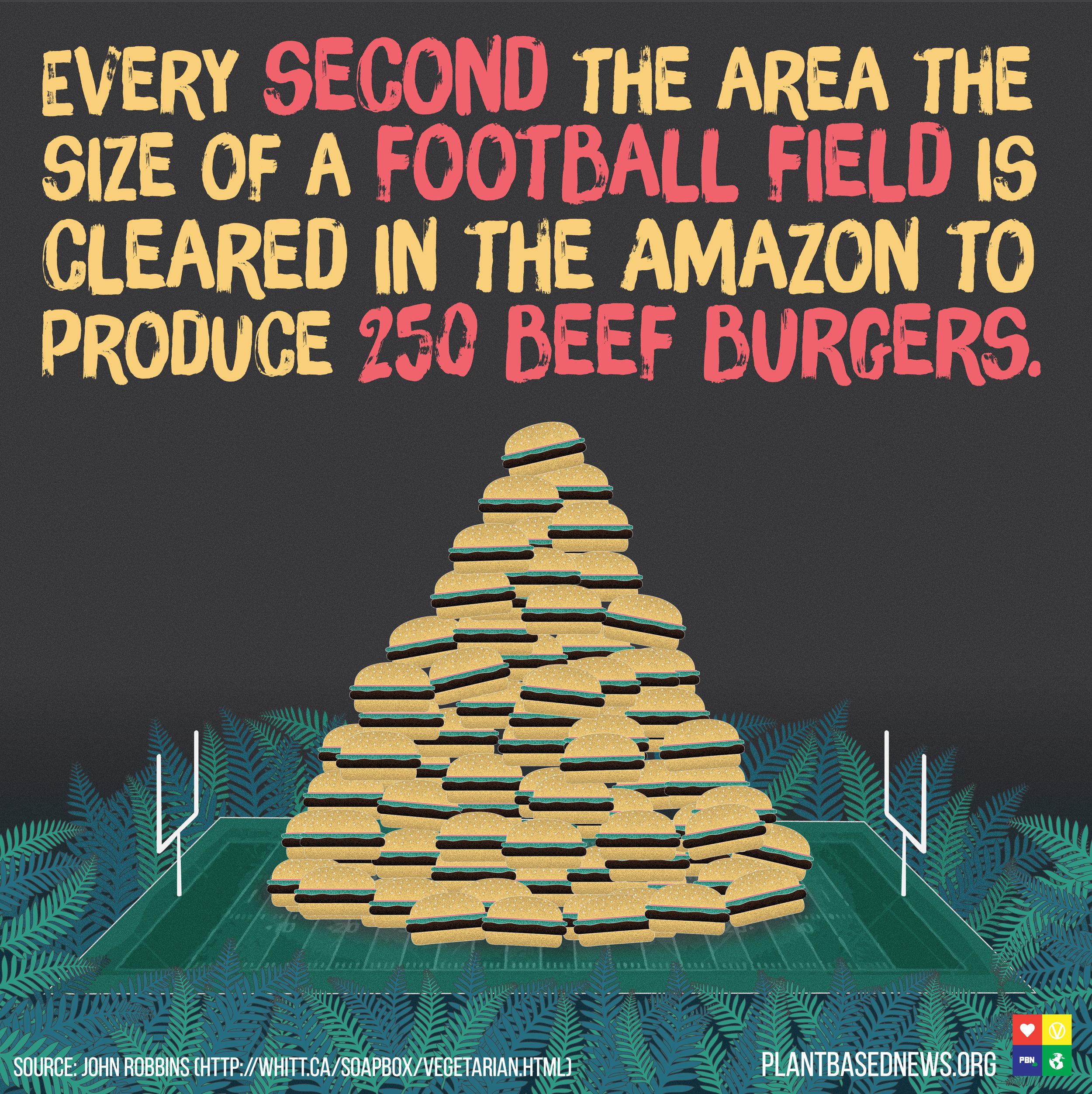 REUPLOAD Burger Rainforest Meme RGB jpg.jpg