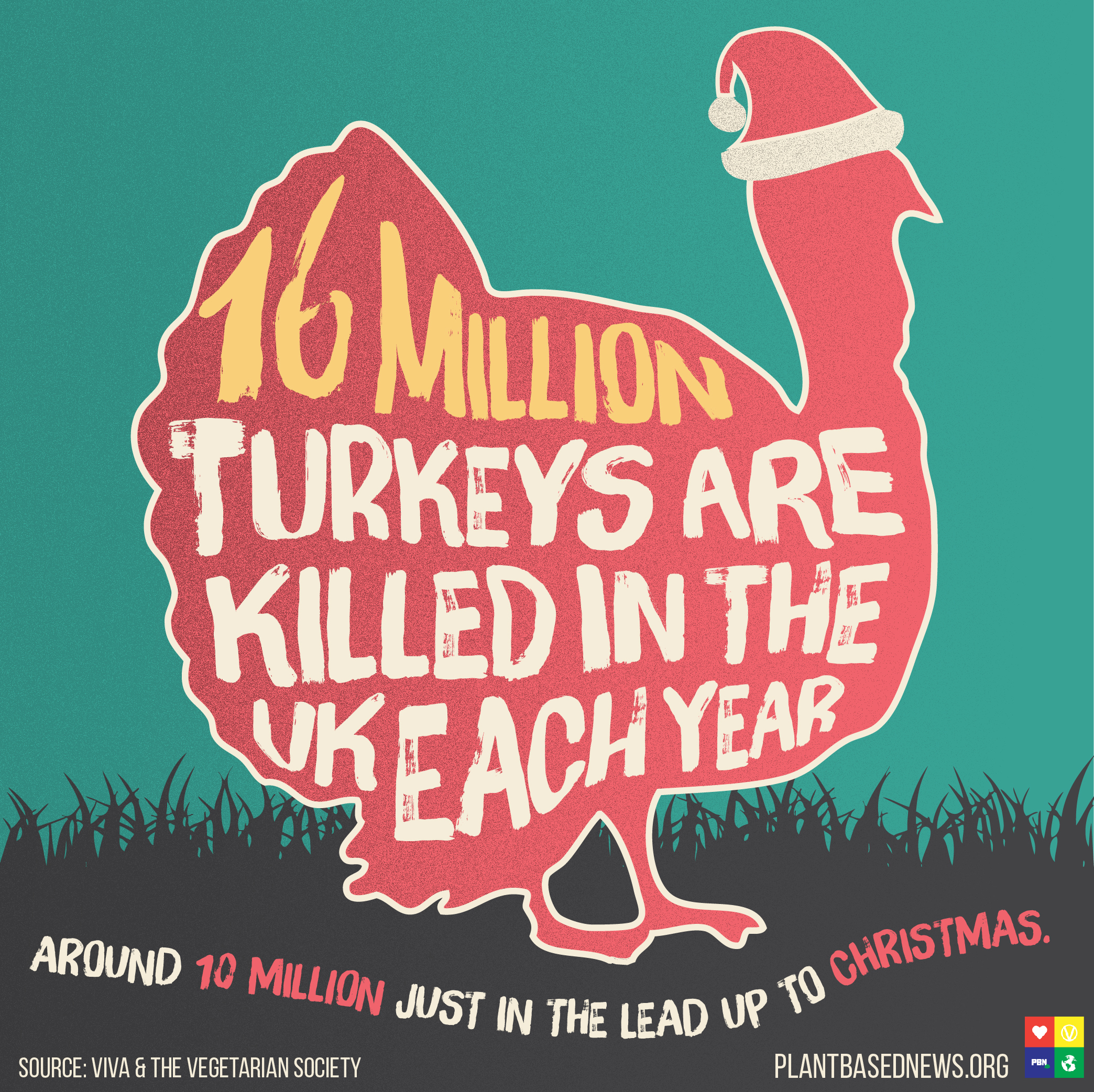 turkey 1 Square.jpg