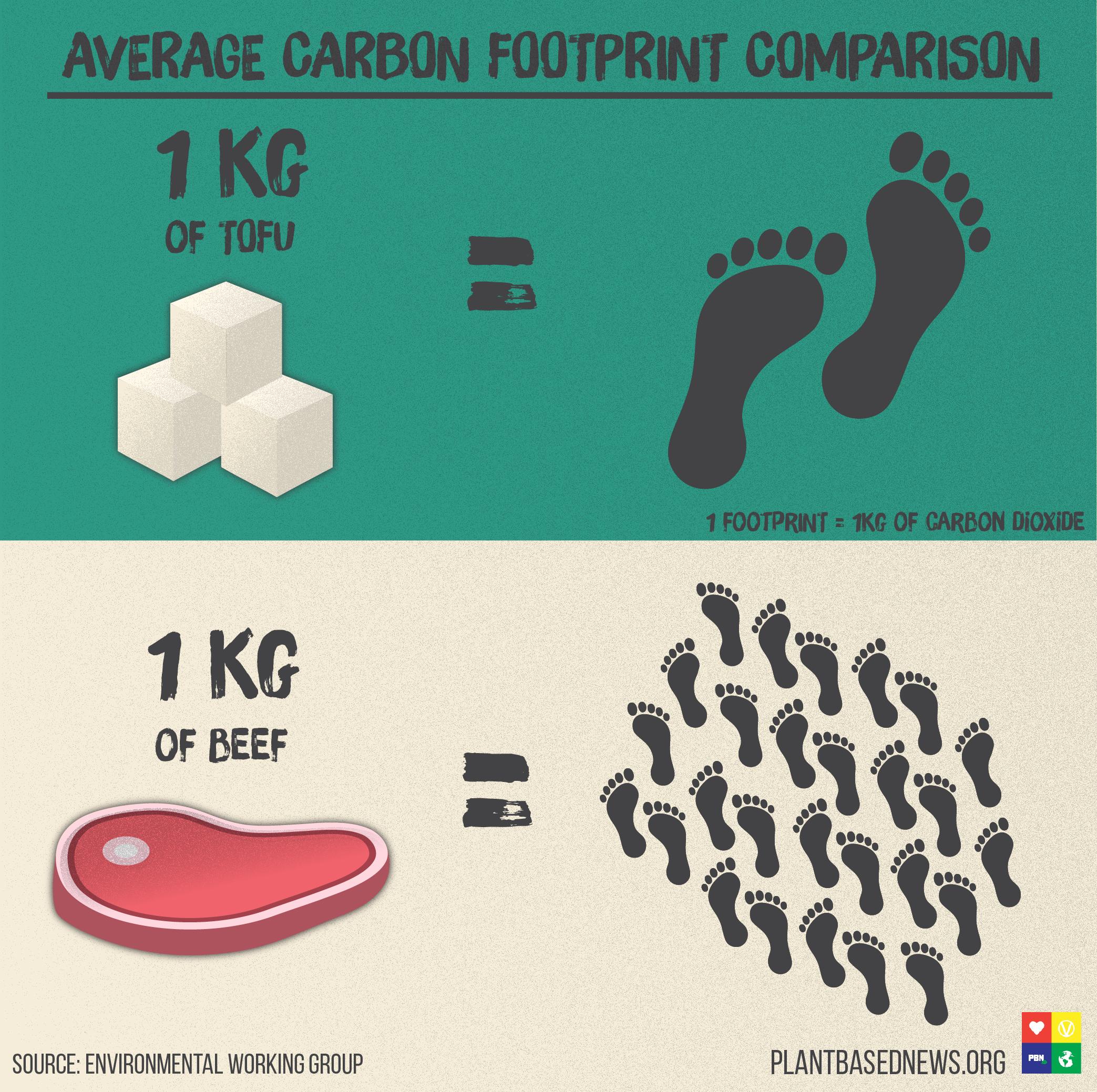 Carbon Footprint Square.jpg