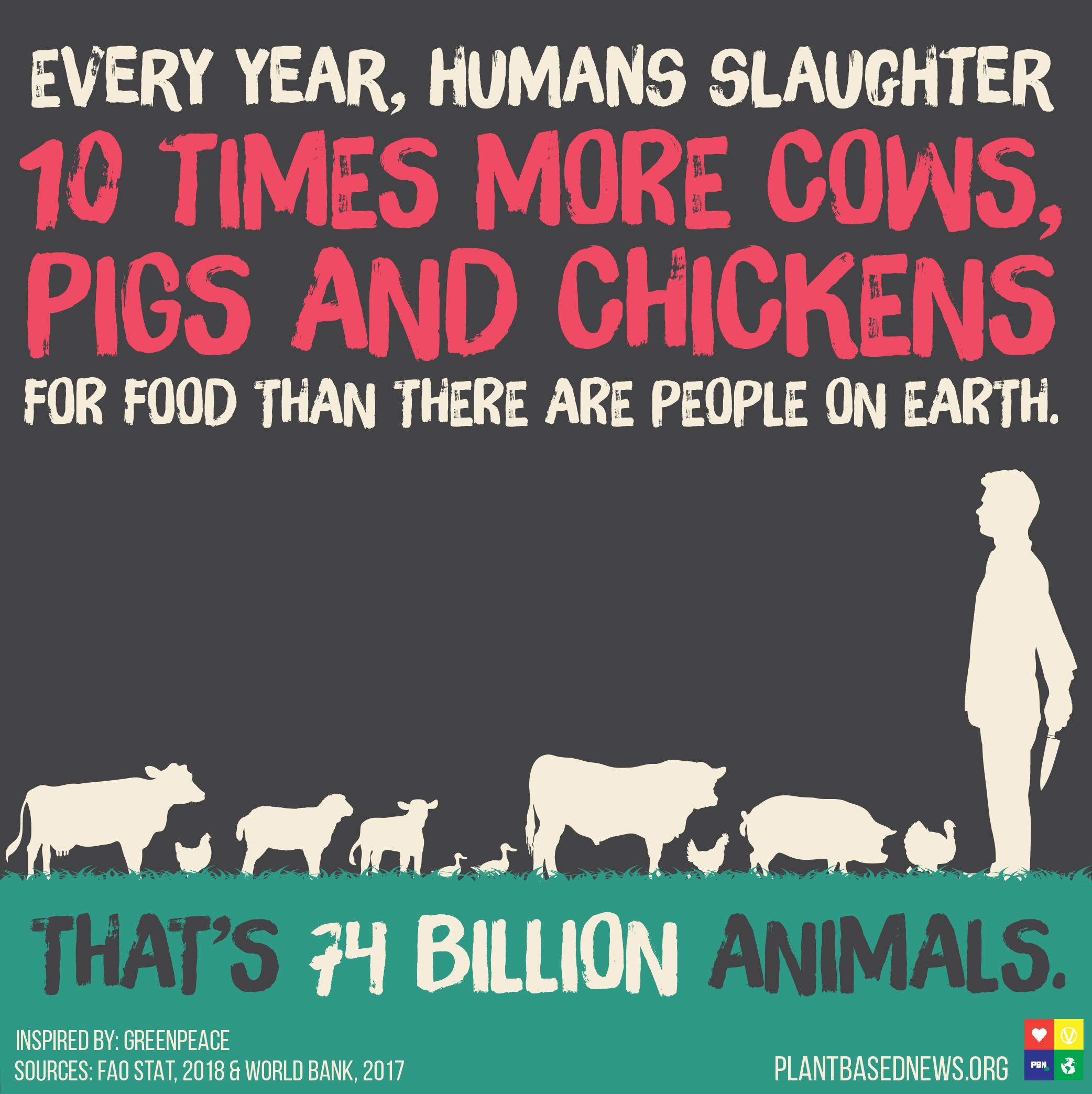 76 billion animals Square.jpg