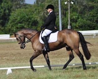 Julie Roy and Horse.JPG