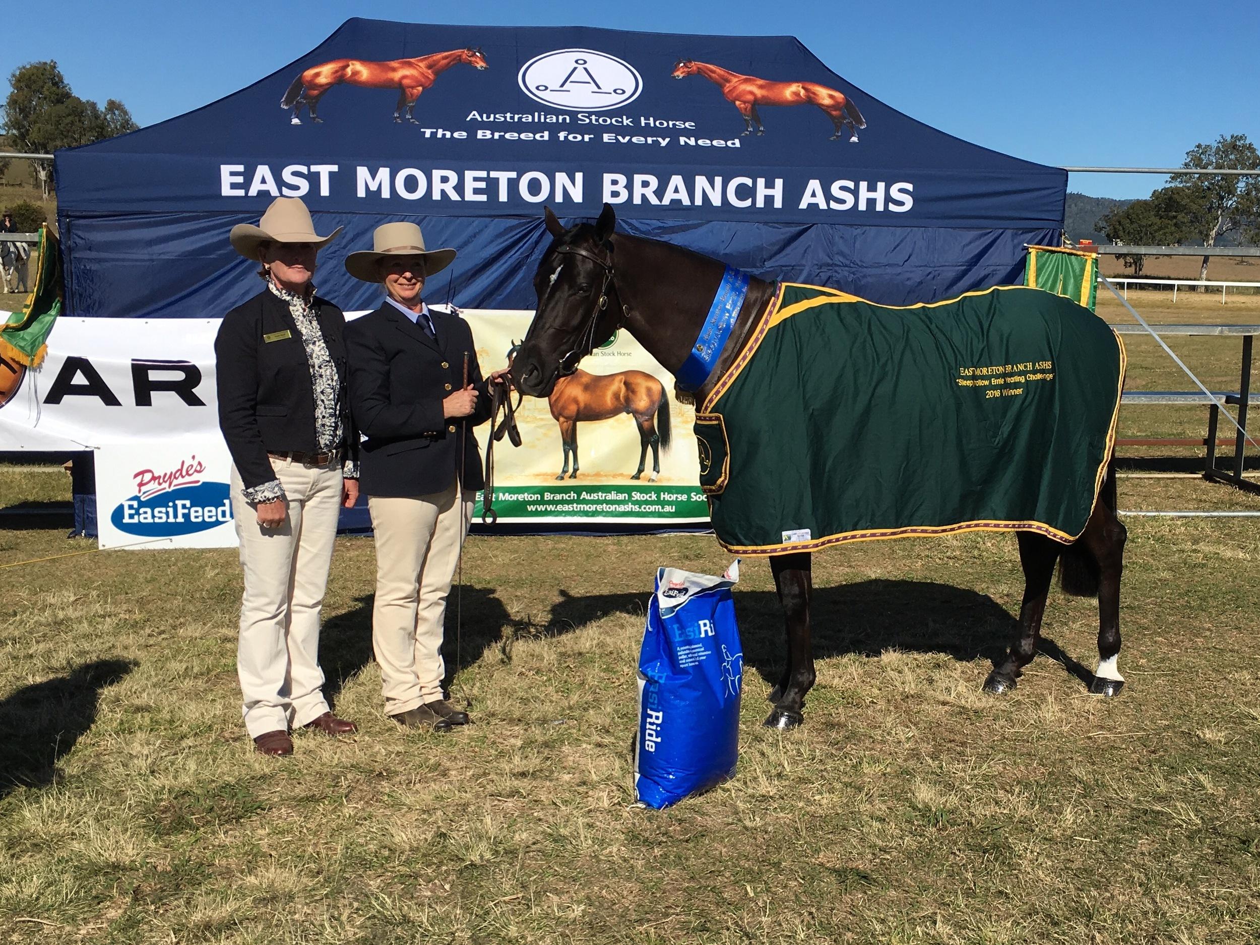 Stock Horse - East Moreton Branch ASHS