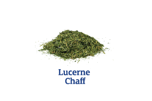 Lucerne-Chaff_Ingredient-pics-for-web.png