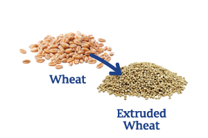Wheat-to-Extruded-Wheat_Ingredient-pics-for-web.png