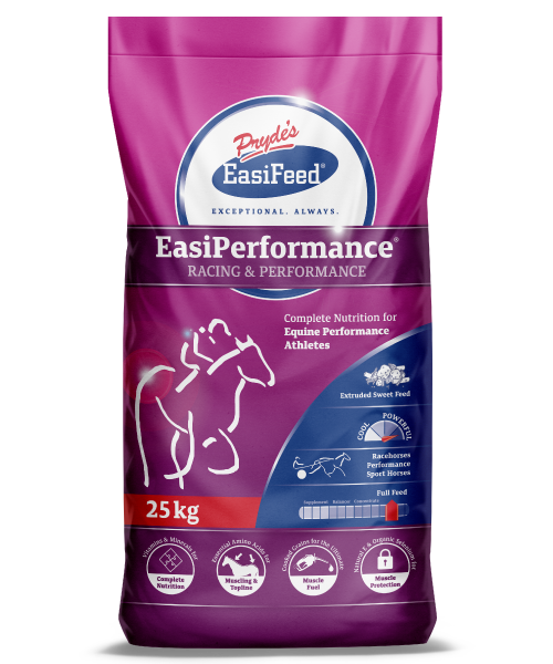 EasiPerformance
