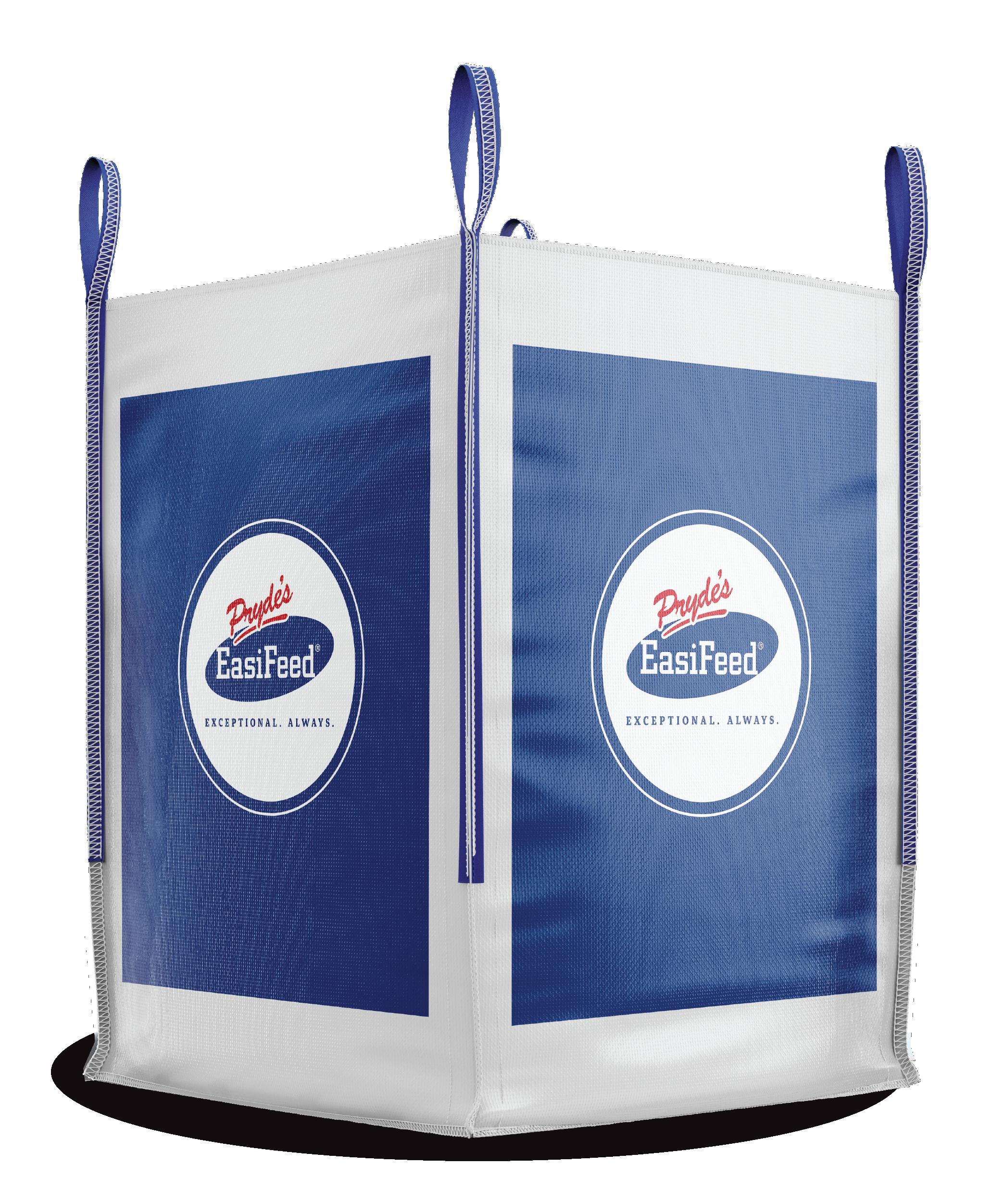 Generic_bulk bag mockup.png.png