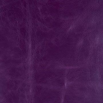 128 Erica Purple