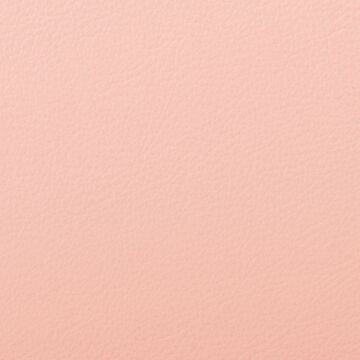 303 Pink