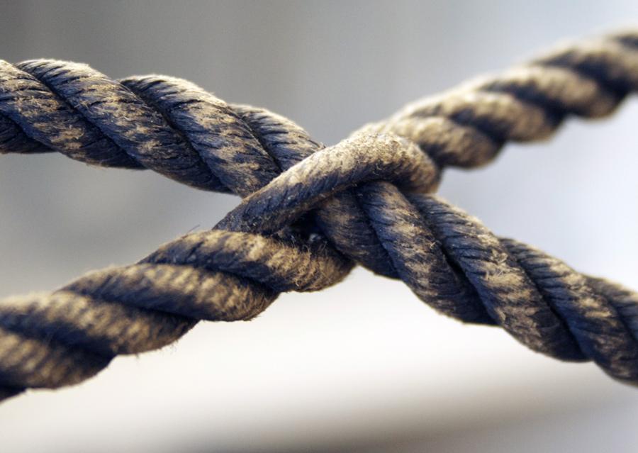 Hampans styrka, stora draghållfasthet och motståndskraft mot väta gör att det fått ett stort användningsområde inom repslageriet. Det passar bra att tillverka snören, rep och säckar av.