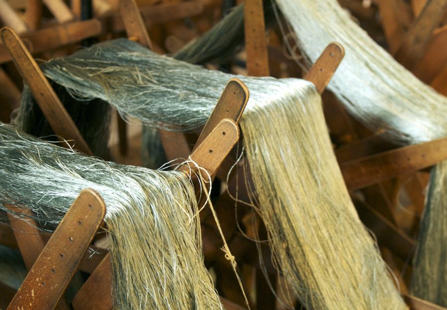 Silkestråd.  Foto Heli Björkman