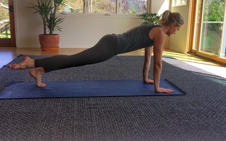 Plank with Leg Lifts