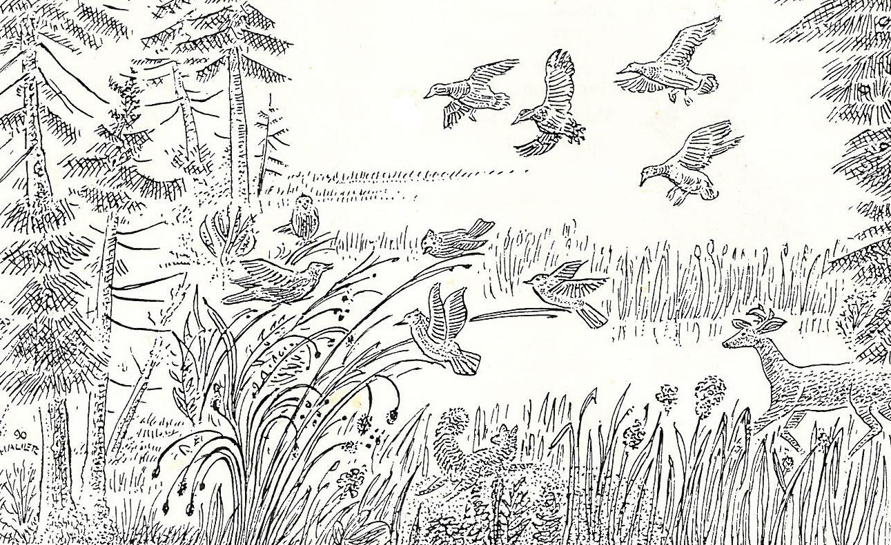 ducks and deer.jpg