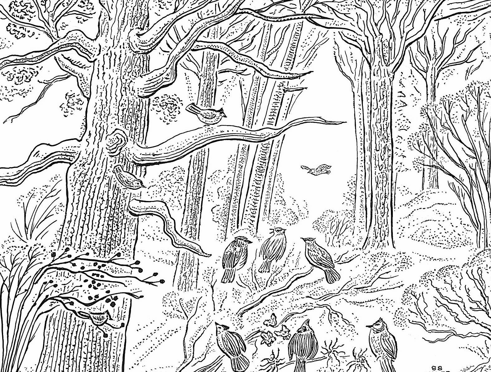 tree and birds card(copy).jpg