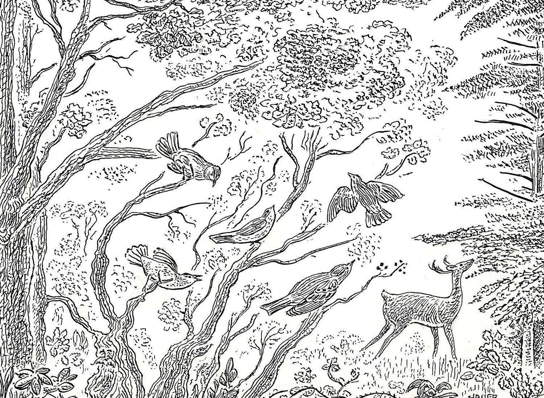 deer and birds.jpg