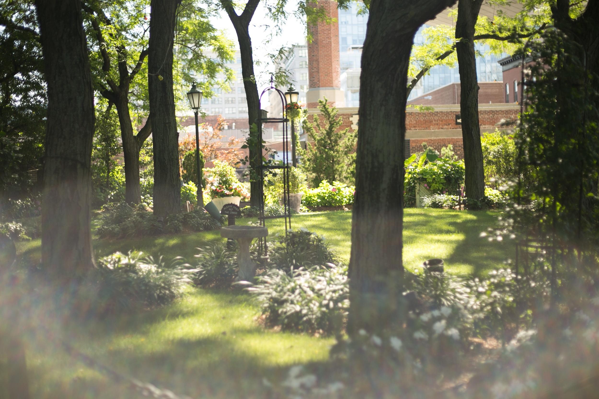 Garden under Brooklyn Bridge