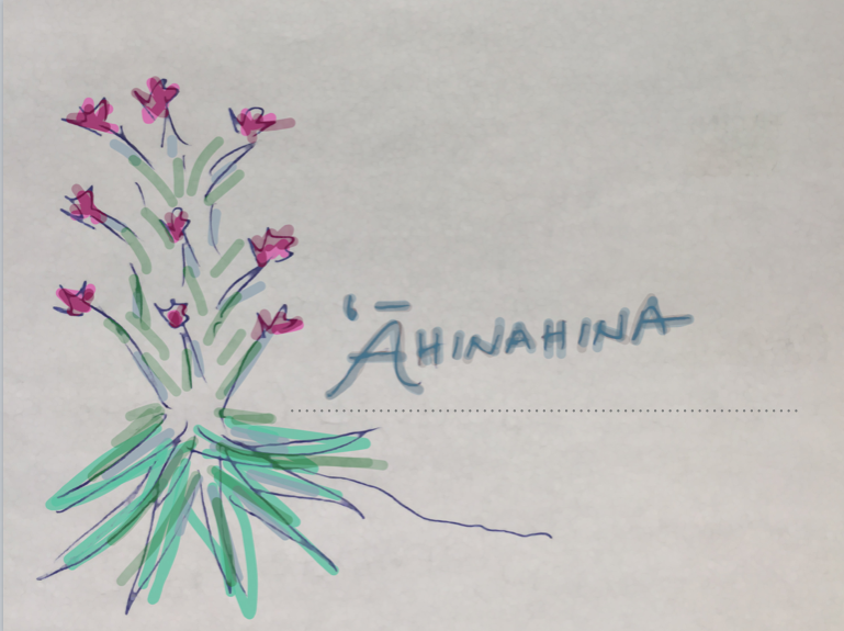 'Āhinahina — Co-creating with Natureʻs Cycles - Practice of Sustainable DesignSD 7620 Spring 2018