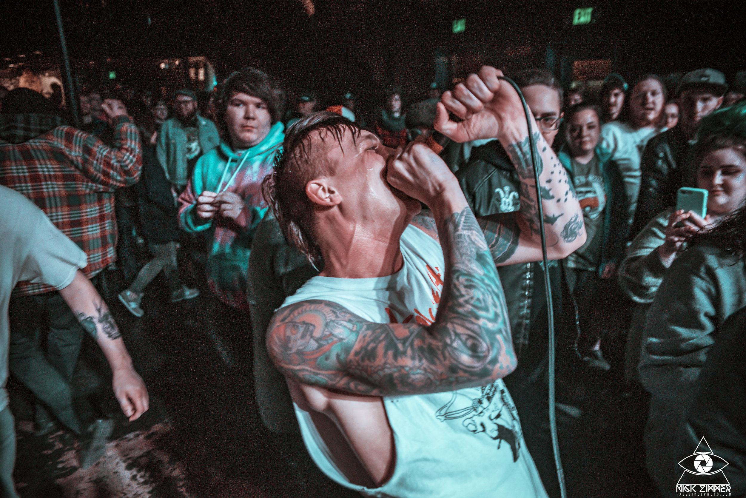 The White Noise | Nashville, TN