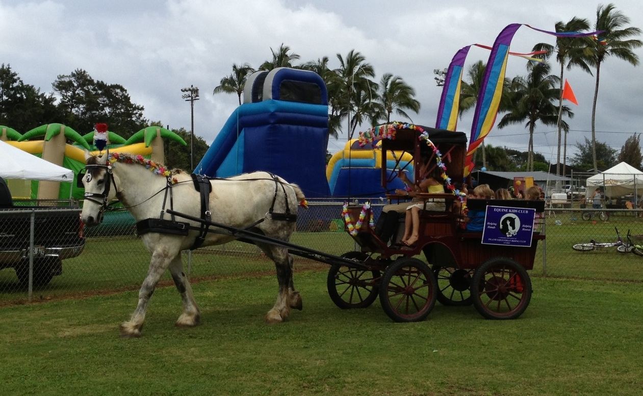 Equine Kids Club helps charities by  raising money at events as well as having raffles for a chance to win a magical carriage ride experience in spectacular locations.