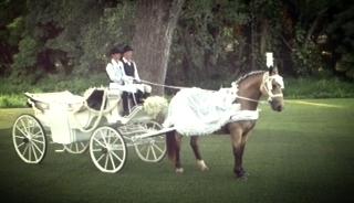 white carriage.jpg