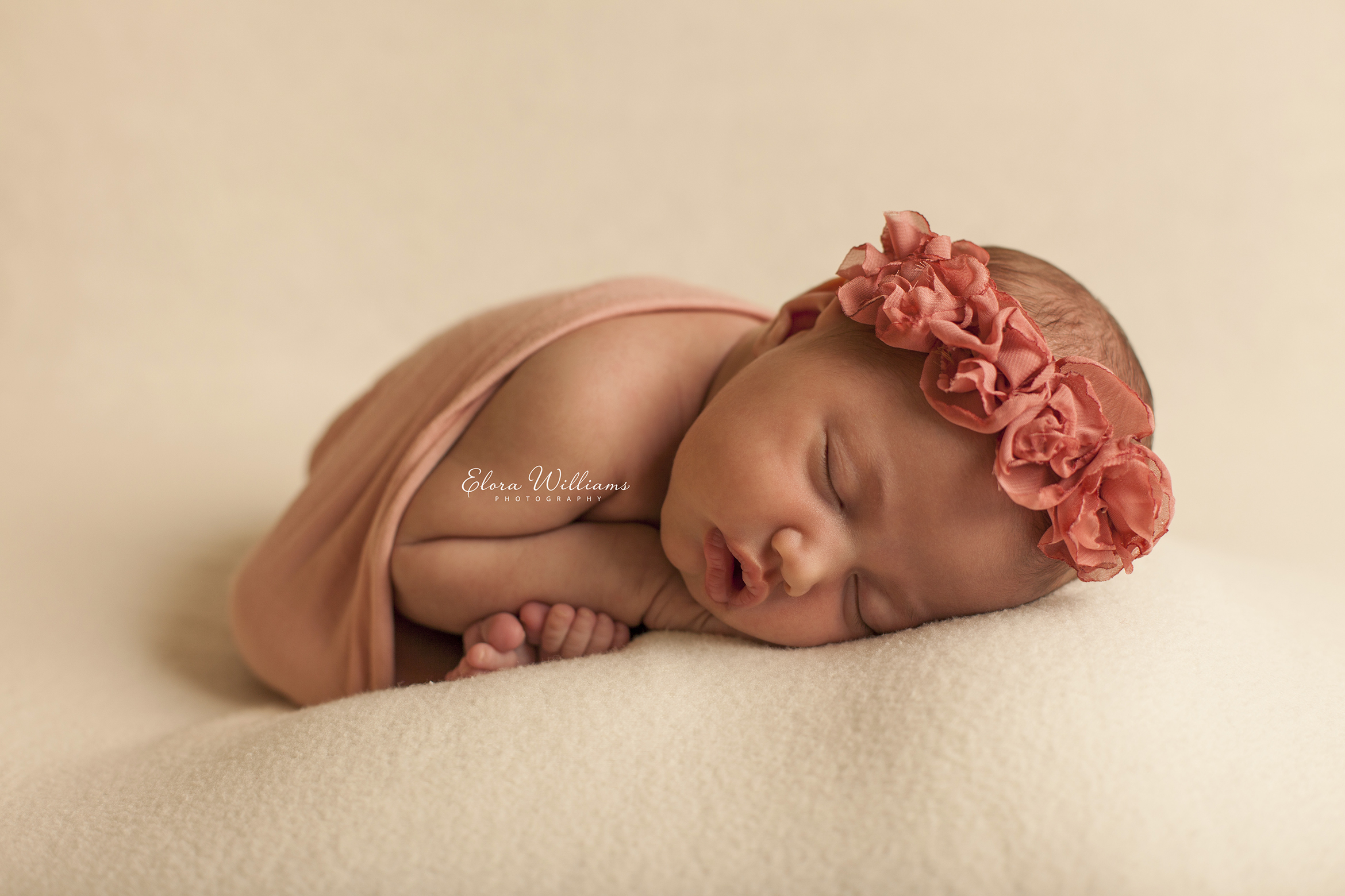 Newborn Photographer  |  Elora Williams Photography