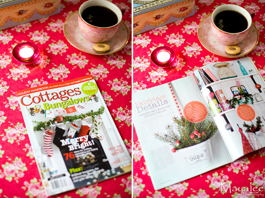 mayalee_cottages_bungalows_magazine.jpg