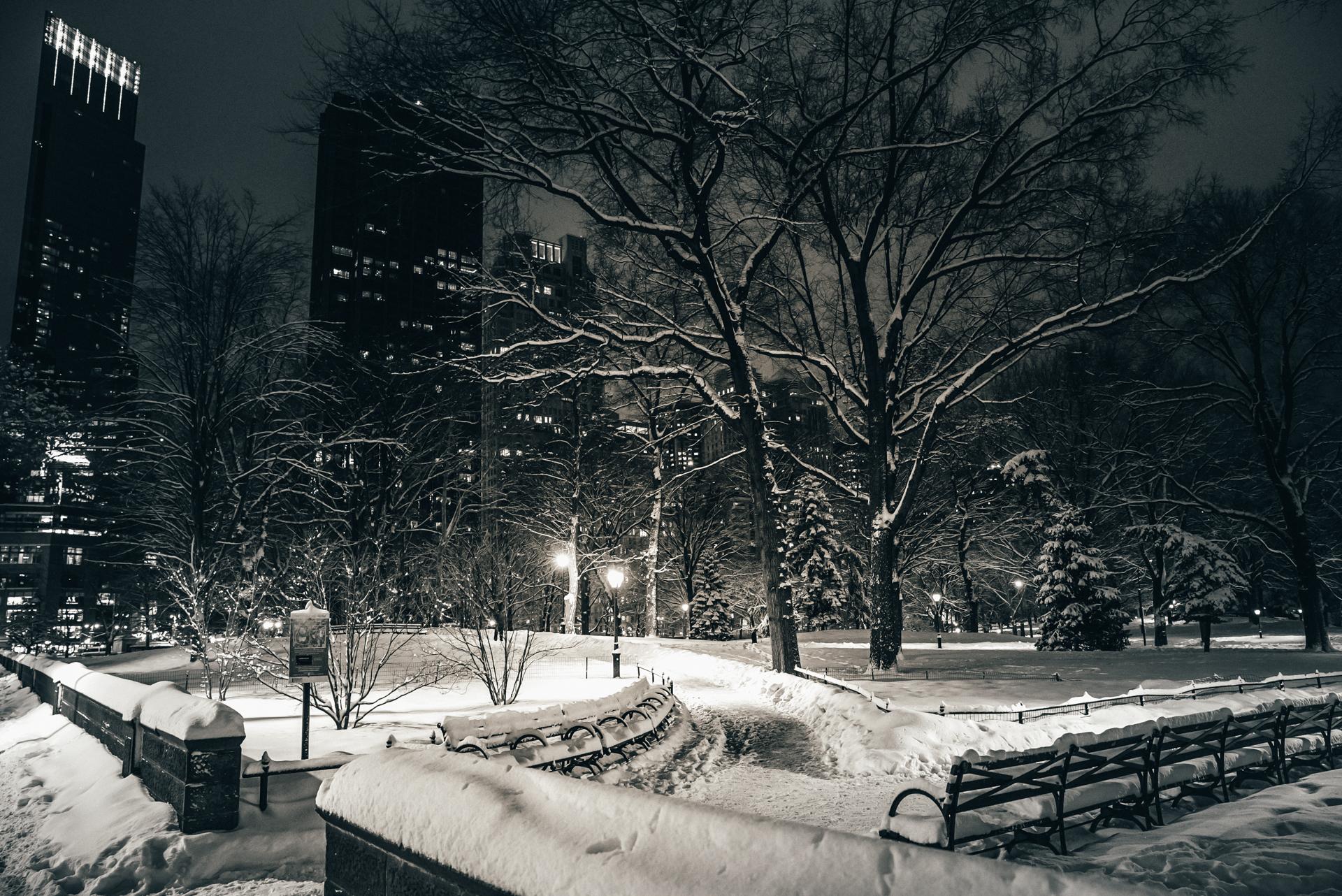 NY15-11.jpg