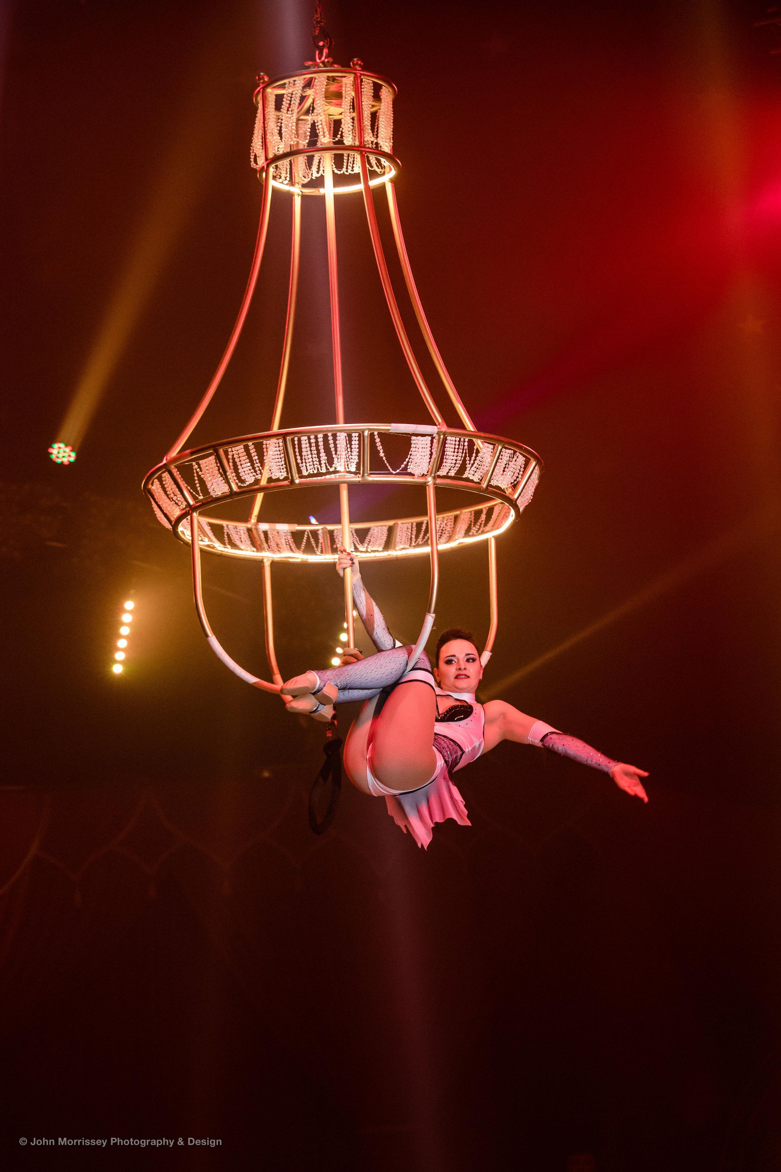 Circus (3).jpg