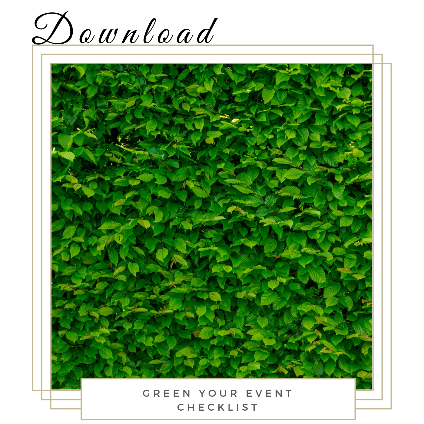 Green Your Event Checklist