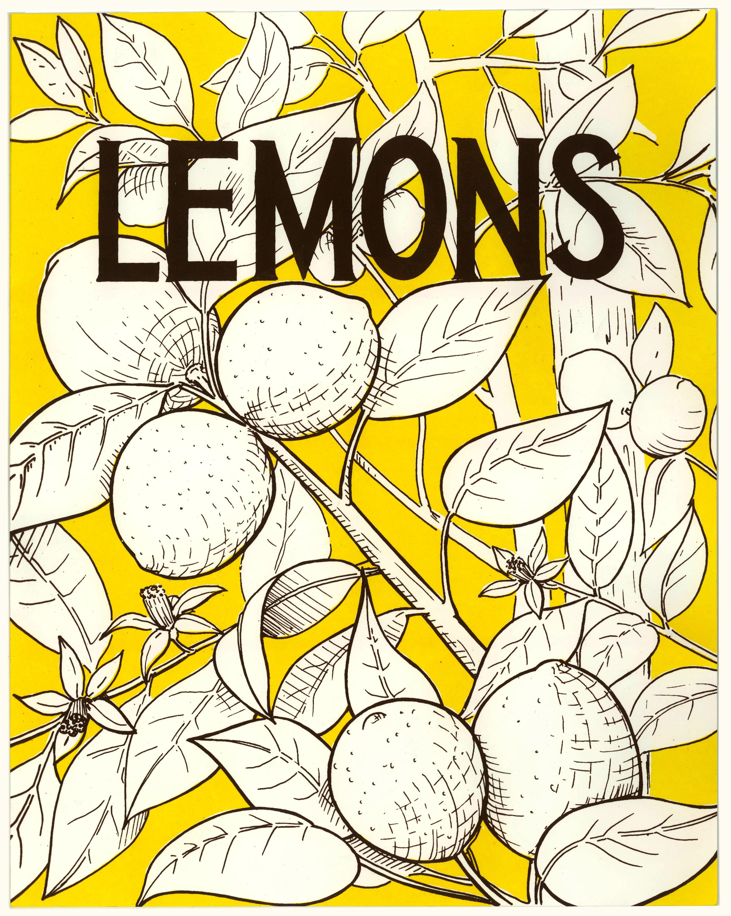 lemon_web.jpg