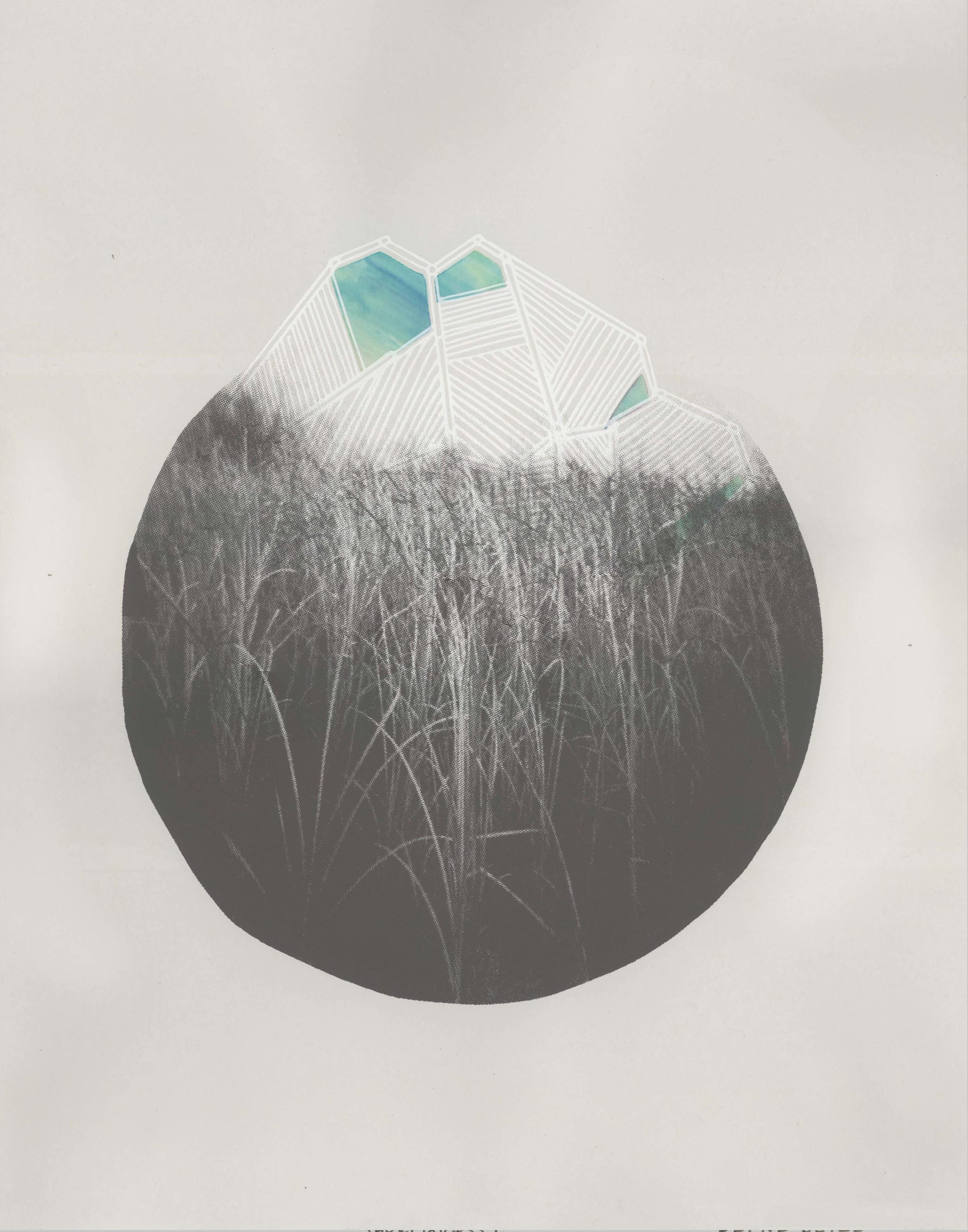 shortgrass_D.jpg