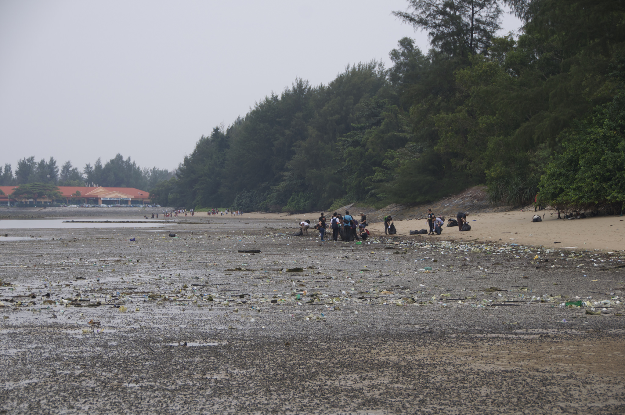 Singapore - Tanah Merah Beach - 2.7-before.jpg