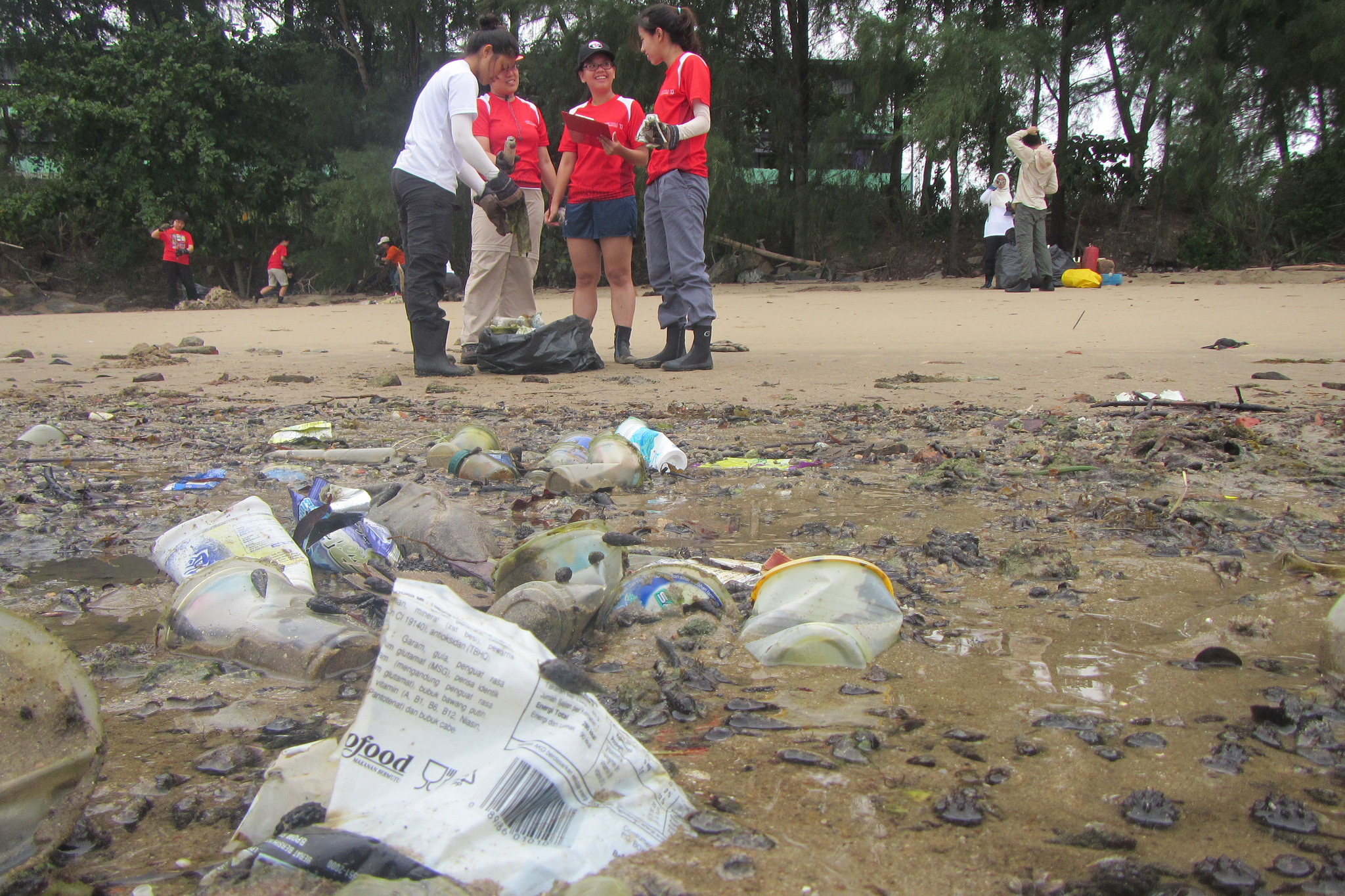 Singapore - Tanah Merah Beach - 2.15-before.jpg